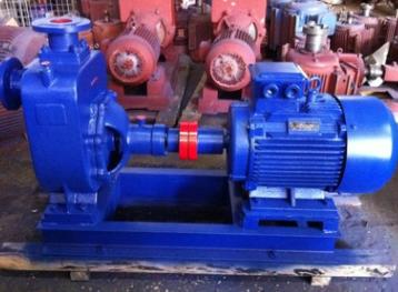 供应卧式无堵塞排污泵、ZW150-180-20污水处理排污泵