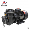 耐高低温泵离心泵不锈钢离心泵热油循环热水泵卧式离心泵乙二醇泵