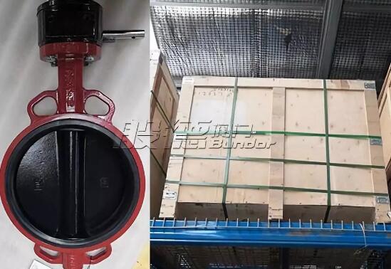 西亚某工厂采购般德软密封对夹蝶阀