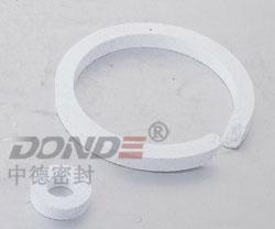 ZD-RP1200 四氟盘根环