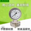 隔膜压力表YTP100-ML膜片压力表防腐高酸碱化工厂专用压力表法兰