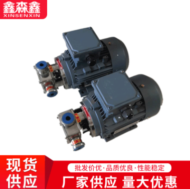 厂家直销RXB-40不锈钢挠性转子泵 齿轮泵 自吸泵 安装尺寸