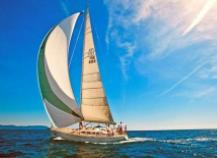 乘风破浪湛十载,扬帆起航创未来