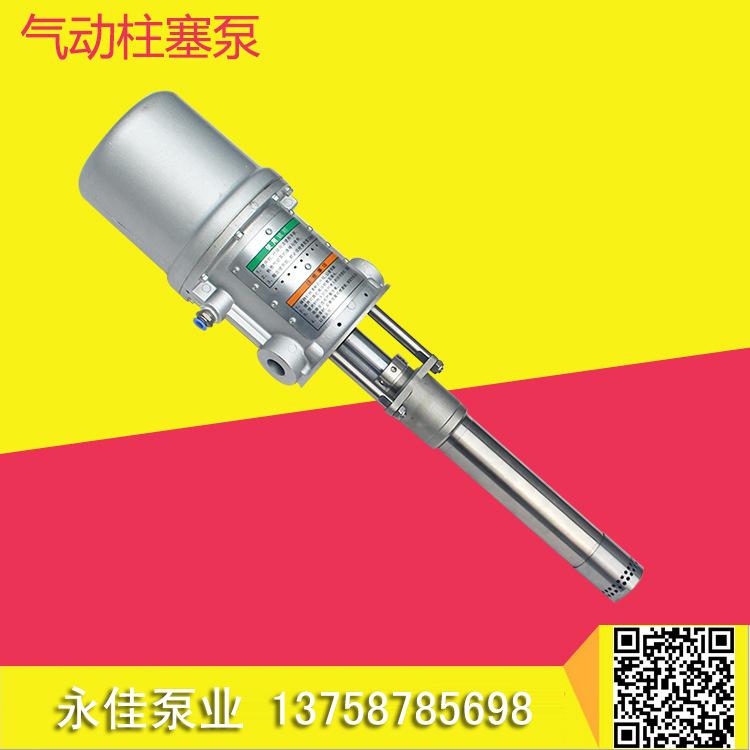 气动柱塞泵2