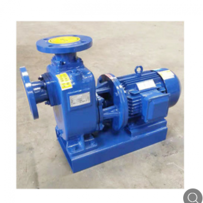 加工定制自吸泵 不锈钢化工排污泵卧式无阻赛双吸电动变频自吸泵