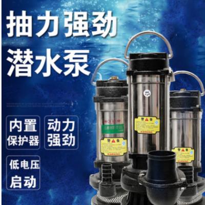 不锈钢潜水泵220V家用小型抽水机农用灌溉水泵含热保护器铸铁泵头