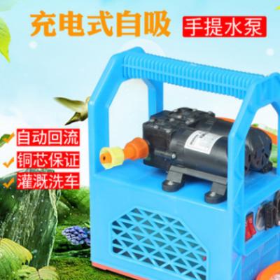 回流式手提塑料架双泵喷雾器 便携式12V洗车器农药打药机