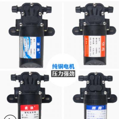 【喷雾器水泵】电动喷雾器隔膜泵,隔膜泵12V 微型水泵配件