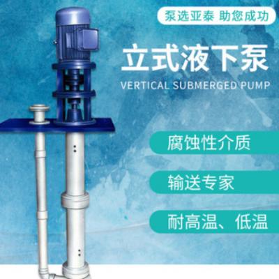 FY型耐腐蚀液下泵 厂家定制耐酸不锈钢料浆液下泵 化工液下泵