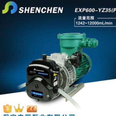 防爆泵 防爆电机蠕动泵 交流电机驱动 大流量防爆型蠕动泵