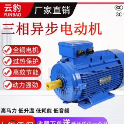 YE2大功率全铜三相异步电动机大马力钻床空压车床电机380V3KW工业