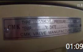 01:09 美标阀门出口企业/gate valve美标 出口闸阀 美标球阀出口 (591播放)